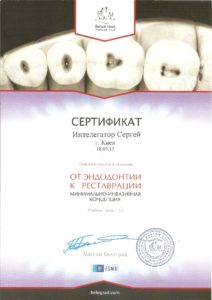 Интелегатор Сергей Витальевич сертификат 1
