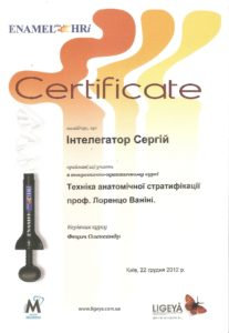Интелегатор Сергей Витальевич сертификат 2
